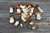 Edible Mushroom Fungi Boletus On Old Wooden Table