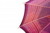 Thailand pattern silk umbrella and sky blue art artist handicraft beach isolated on white background