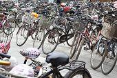 Plenty Bicycles