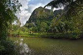 Stunning View To The Karst Formation Hills, River With Fish And Tropical Greenery