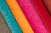 Multicolored Fabric Swatches
