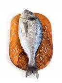Fresh Dorado Fish On A Cutting Board