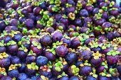 mangosteen fruits
