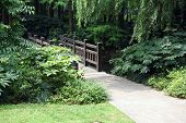 Wooden walkway in park