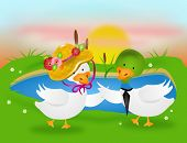 pic of canard  - Illustration of dancing ducks by pond in sunset - JPG