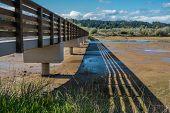 stock photo of wetland  - A walking bridge spans wetlands at The Theler Wetlands in Belfair Washington - JPG
