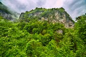 stock photo of afforestation  - Beautiful mountain landscape in a rainy day - JPG