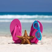 picture of starfish  - Pink flip flops swimming glasses and starfish on white sandy beach - JPG