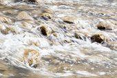 pic of flow  - Spring stream flowing through mossy rocks - JPG