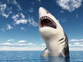 picture of great white shark  - Computer generated 3D illustration with a Great White Shark - JPG