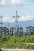 image of power transmission lines  - Electrical power transmission line in rural area - JPG