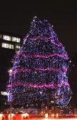 Festive Decorated Tree