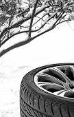 Winter Snow Tire