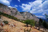 Parnassus Mountains At Delphi, Greece