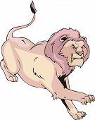 Aggressive Running Lion