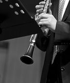 Clarinetist on concert