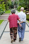 a Senior Couple Walking in a garden