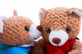 Toy Bears Closeup