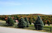Rural Autumn