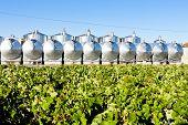fermentation tanks, Begadan, Bordeaux Region, France