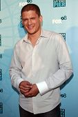SANTA MONICA - JULY 14: Wentworth Miller at the Fox TCA Summer Party in Santa Monica, California on
