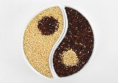 Yin and Yang Symbol Made of Quinoa