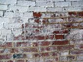 White Brick Wall 3