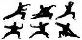 foto of tai-chi  - Abstract vector illustration of martial art warrior silhouette - JPG