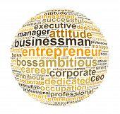 businessman and entrepreneur info text graphic and arrangement concept