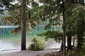 Clean Mountain Lake Surrounded By Coniferous Forest, Joffre Lake, British Columbia, Canada poster
