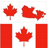 picture of canada maple leaf  - The Canada design was done in vector AI - JPG