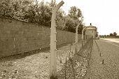 Sachsenhausen-oranienburg was a nazi camp in germany pic.