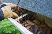 stock photo of gutter  - A fall tradition  - JPG