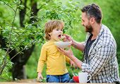Nutrition Habits. Little Boy And Dad Eating. Nutrition For Kids And Adults. Healthy Nutrition Concep poster