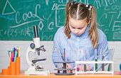 Chemical Analysis. Test Tubes With Substances. Laboratory Glassware. School Laboratory. Girl Smart S poster