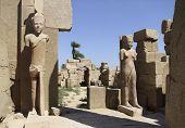 Statues Around Precinct Of Amun-re