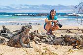 Ecotourism tourist photographer taking wildlife photos on Galapagos Islands of famous marine iguanas poster