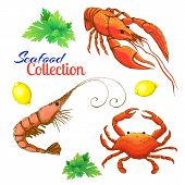 Decorative Seafood Set. Realistic Sketched Prawn Or Shrimp, Lobster, Crayfish And Crab With Lemon An poster
