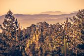 Sunrise In Mountain Landscape. Mountain In Sunrise. Sunrise In Mountain Forest Landscape. Forest And poster