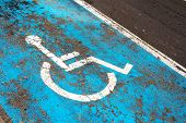 Handicap Parking Sign Painted On Road On Parking Space For Disabled Or Handicapped People In Parking poster