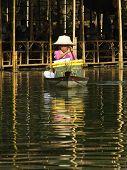 AYUTTHAYA, Tailândia-19 de dezembro: remo feminino não identificado para o cliente no mercado de proa do SRA KLONG