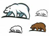 Arctic bears