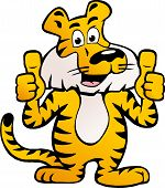 Hand-drawn Vector Illustration Of An Happy And Proud Siberian Tiger  Giving Two Thumb Up