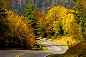 image of paved road  - winding paved road through autumn foliage in Smoky Mountains - JPG