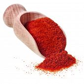 powder paprika with wooden spoon scoop isolated on white background