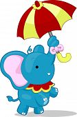 Cartoon llustration of a Circus Elephant balancing and holding an umbrella with its nose