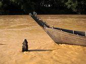 Timber Boat At Muddy River