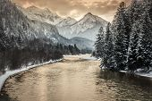 stock photo of tramp  - Sunset in a landscape with trees alps and a river - JPG