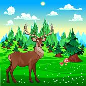 Deer in mountain landscape. Vector cartoon illustration.