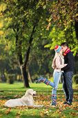 image of labrador  - Male and female kissing in a park and a labrador retreiver dog watching them - JPG